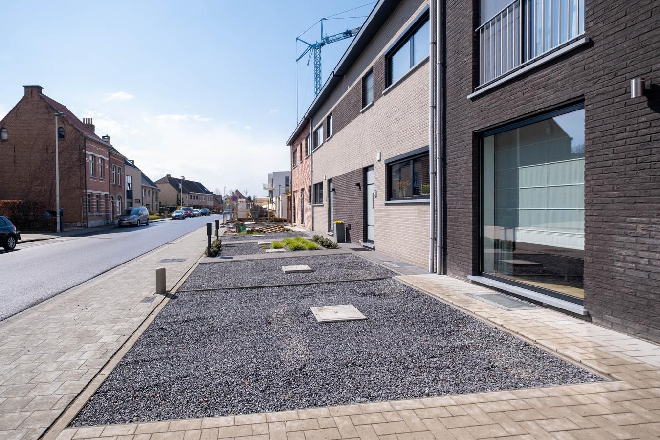 Onder andere deze strook voortuintjes in de Lierse Boomlaarstraat moet worden vergroend.
