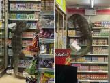Enorme varaan terroriseert Thaise supermarkt