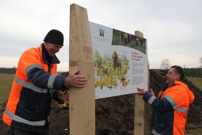 IBN'ers Roel en Theo plaatsen een informatiebord over de wisent bij de uitkijkpost in De Maashorst.