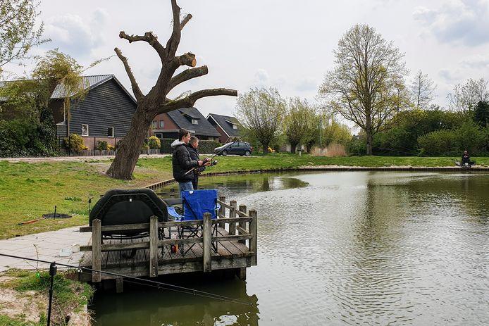 De brandput aan de Vijverstraat in Lage Zwaluwe is een populaire visstek, maar helaas zorgt blauwalg regelmatig voor vissterfte.