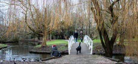 Protest tegen bomenkap Noorderpark: 'Het groen verdwijnt hier zienderogen'