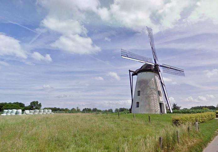 De Verrebeekmolen in Brakel krijgt een onderhoudsbeurt.