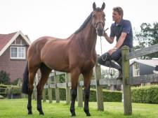 Afscheid van succesvol paard Zenith bij The Dutch Masters