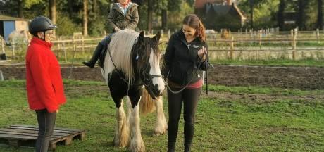 Eerst bouwen dan legaliseren: initiatiefnemer paardenwei verspeelt goodwill van buurt
