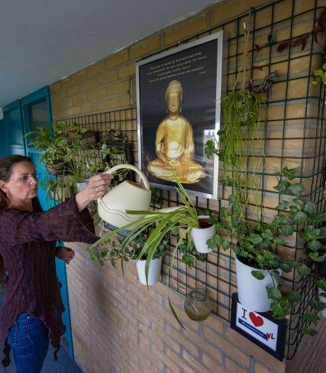 Ook planten verdienen een tweede kans: plantenasiel Kampen komt op stoom