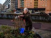 Ondanks gestolen kerstballen blijft Jannie (74) de buurt opfleuren: 'We kunnen wel wat vrolijkheid gebruiken'