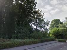Vughtenaar wil uitspraak rechter over gekapte bomen op Elzenburgterrein