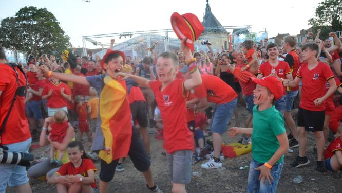 Definitief geen EK-voetbaldorp in Ninove
