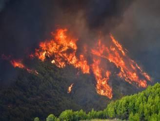 Bosbrand nabij Griekse Olympia: bakermat van Olympische Spelen voorlopig gespaard van de vlammen