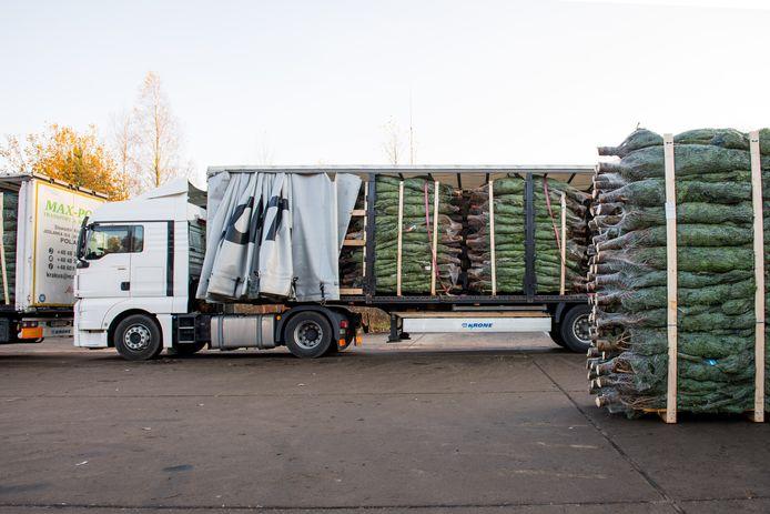 50 tot 100 vrachtwagens per dag laden en lossen kerstbomen op het vliegveld
