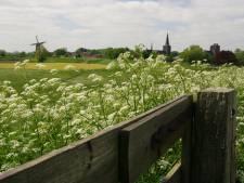 Onderzoek naar komst fiets-/wandelpad op dijk tussen Amerongen en Wijk