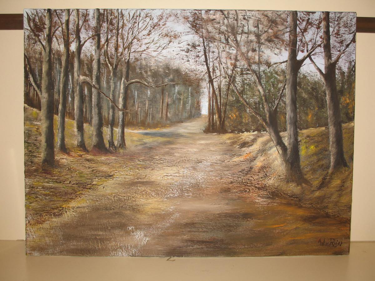 Wil van Rijn uit Heesch schildert met name landschappen.