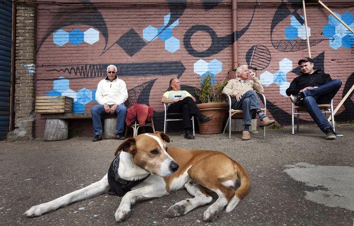 Arie, Arie, en Arie praten met Vloek-woordvoerder Kwinten Keesmaat (rechts). Hond Blits waakt over hen.