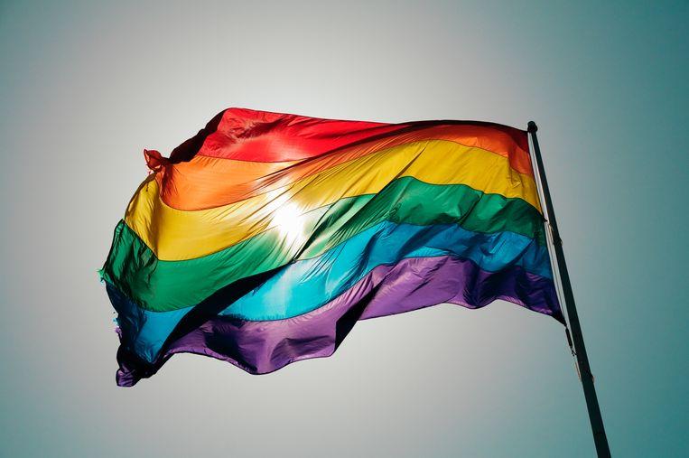 Rainbow flag flies against blue sky Beeld Getty Images