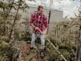 Planten lopen achter door koud voorjaar: 'Gun ze wat tijd'
