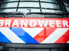 Maaslandse brandweermannen krijgen lintje