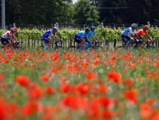 LIVE | Voorsprong Italiaans trio stagneert, Viviani en Démare ruiken kans