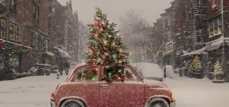 Dit zijn de boetes voor het verkeerd vervoeren van de kerstboom