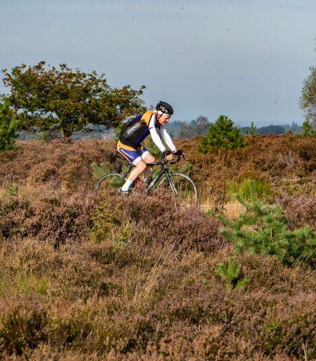 Natuurorganisatie wil optreden tegen mountainbikers op de Sallandse Heuvelrug en sluiting van mtb-route