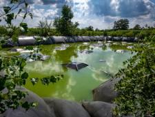 GroenLinks Brummen vermoedt mogelijk milieudelict op perceel in Hall, maar eigenaar verbaast zich: 'Wat is het probleem?'
