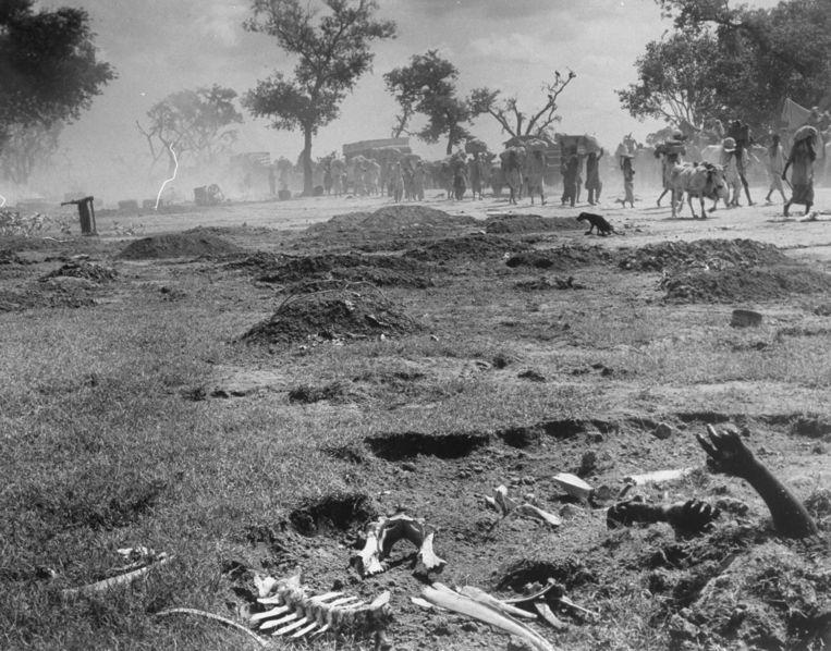 Een karavaan moslims trekt naar Pakistan (1947). Langs de weg liggen de lichamen van vermoorde voorgangers tussen beenderen van lastdieren.  Beeld The LIFE Picture Collection/Getty Images