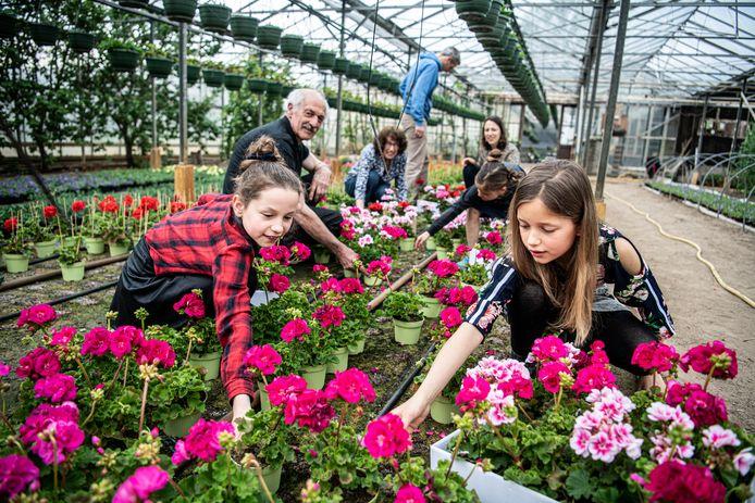 Anouk Stork is met haar vader, kinderen en man bezig met het uitzoeken van de bloemen.