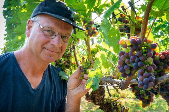 Geert Hermans van Winery & Herbs heeft een bijzonder wijnjaar.
