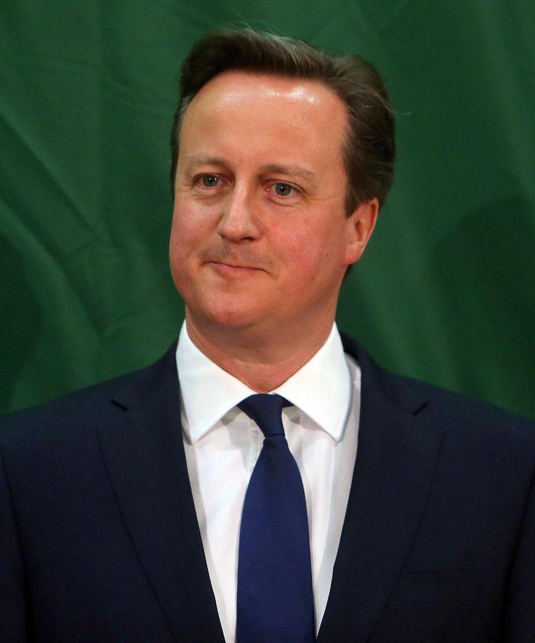 Premier David Cameron van de Conservatieven. Beeld afp