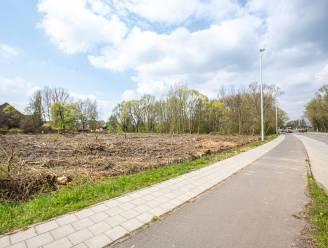 Lidl-project: het groen verdween intussen, maar op beton is het nog maanden wachten