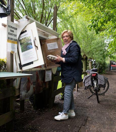 Eigenaren Dennenburg in Driebergen blijven zich verzetten tegen eis om fietspad weer te openen