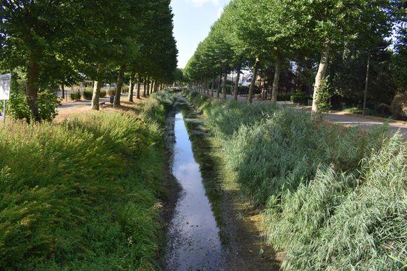 Archiefbeeld: het water in de Langelede staat opnieuw erg laag.