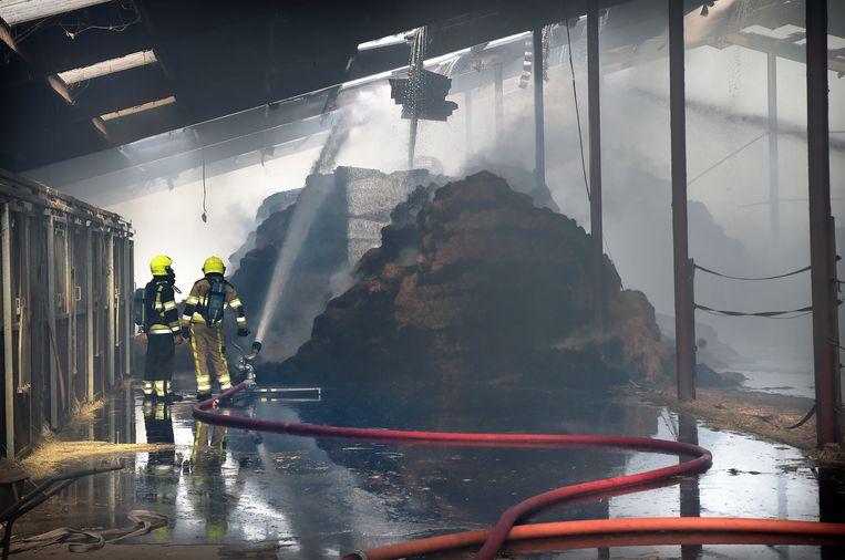 Vrijwillige brandweer blust een hooibrand in Dreumel, 2018. Beeld Marcel van den Bergh