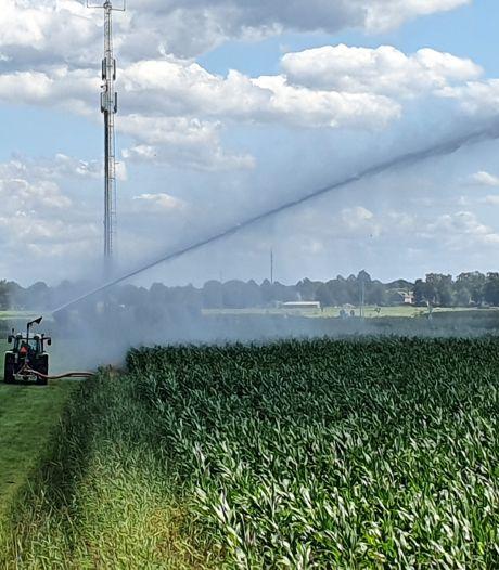 Aa en Maas laat sproeien met slootwater wél toe: 'Bij ons ziet het er gewoon goed uit'