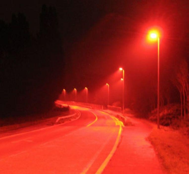 Rode LED-lampen hinderen de vleermuizen niet
