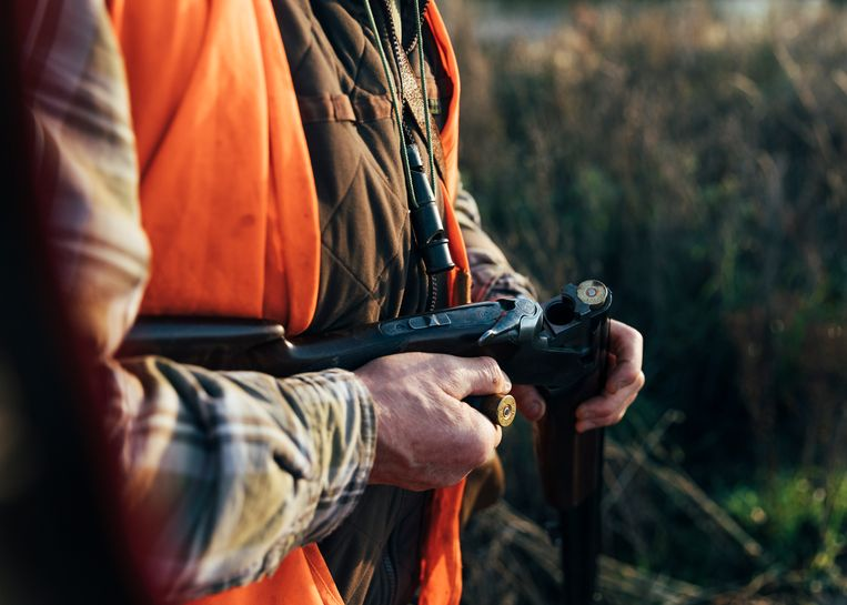 Franse jagers mogen alleen al op 64 vogelsoorten schieten. Ter vergelijking: het gemiddelde aantal bejaagbare vogels in EU-landen is 24. Beeld Rebecca Fertinel