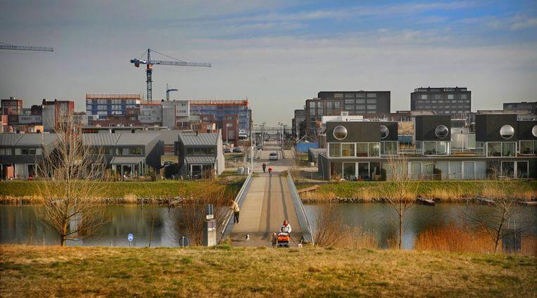 Diemerparklaan lopend van de Rieteilanden naar het Haveneiland-West tot aan het IJ-meer . Foto Floris Lok Beeld