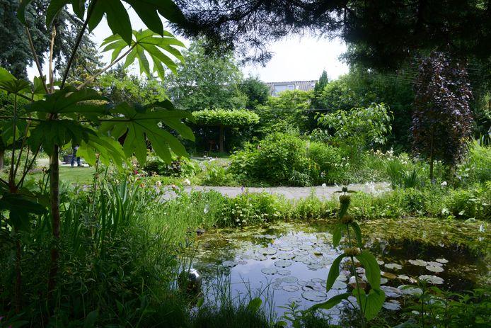 BN DeStem TuinAward deel 7: Tuin van Yvonne en Joop de Blok uit Roosendaal