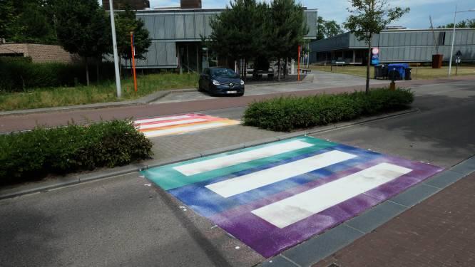 """Kleurrijke zebrapaden in Bonheiden als steun voor LGBTQ+ -gemeenschap: """"Een hart onder de riem voor inwoners die zich anders voelen en zichzelf niet durven zijn"""""""