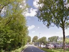 Gemeente wil negentig bomen kappen langs de Prinses Beatrixlaan
