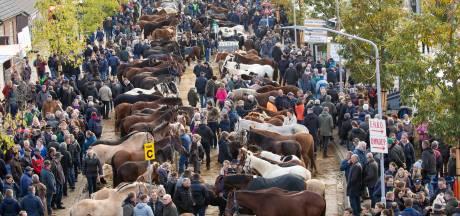 Paardenmarkt Hedel gaat in november niet door