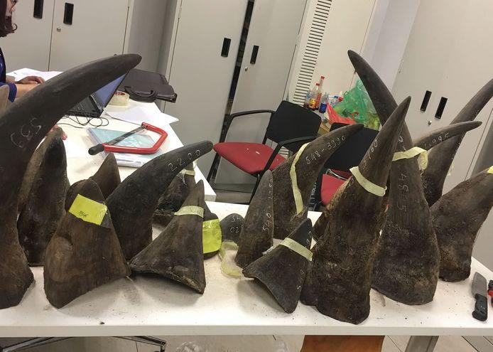 archiefbeeld: in beslag genomen neushoornhoorns.