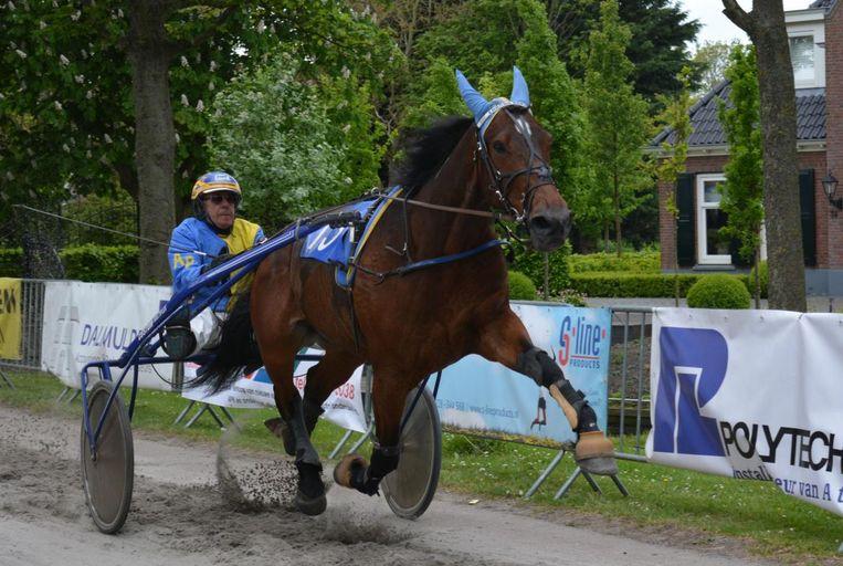 Nederlander Aad Pools aan het werk met zijn paard.