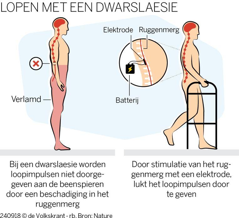 null Beeld De Volkskrant/Nature
