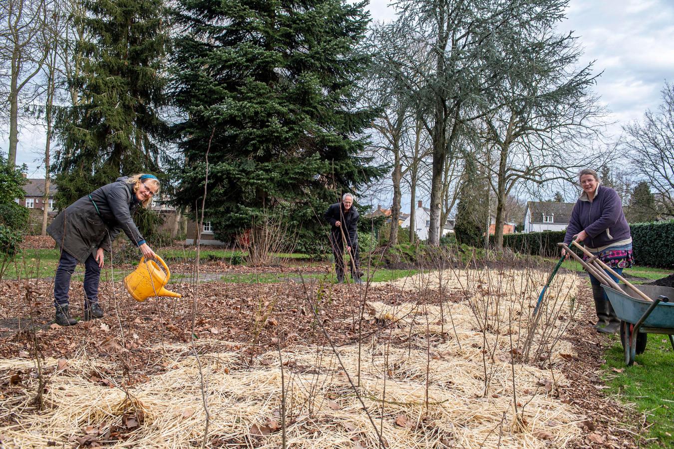 De initiatiefnemers en hun Tiny Forest. V.l.n.r. : Marjan Bosch, Rob Knipping & Monica Versluis