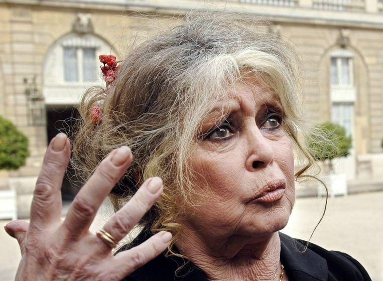 Brigitte Bardot Red Olifanten Of Ik Word Ook Russische
