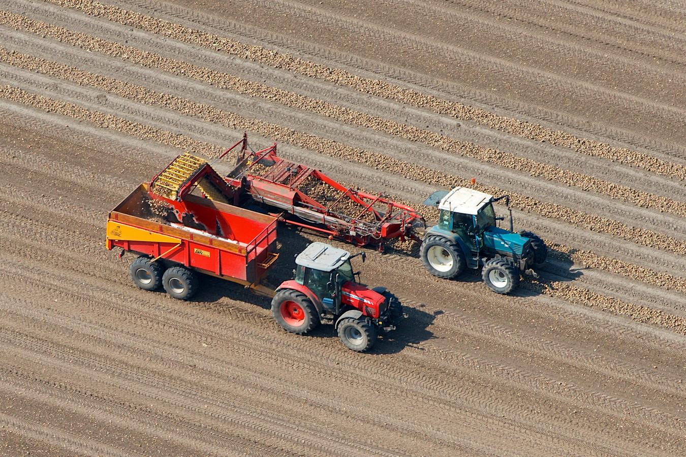 """Aardappeloogst in Flevoland. De polder zou wel eens veel baat kunnen hebben bij de rijdende zonnevelden van H2arvester, zegt Wouter Veefkind van LTO Noord. ,,Strokenlandbouw lijkt er ideaal voor."""""""