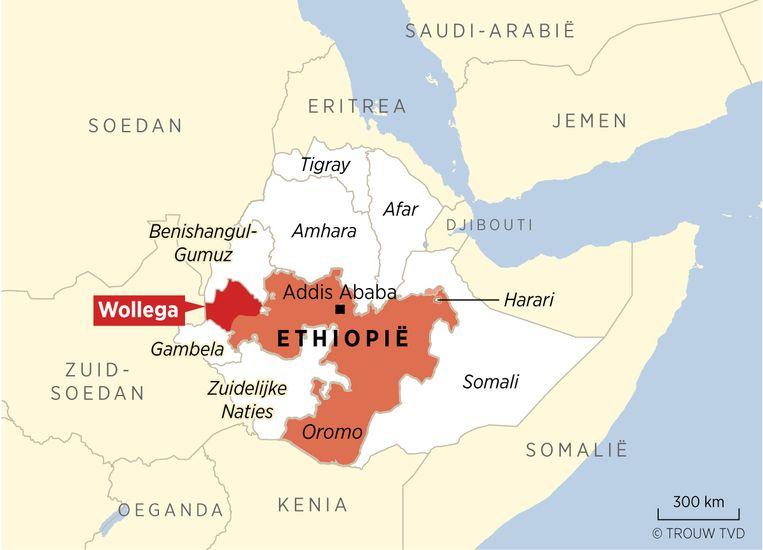 De Wollega regio in de provincie Oromo waar de slachtpartij op Amhara's plaats had.  Beeld Thijs van Dalen, Trouw