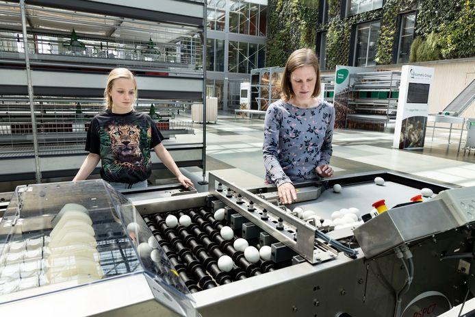 Steffie kijkt naar een eiermachine bij de Vencomatic Group in Eersel.