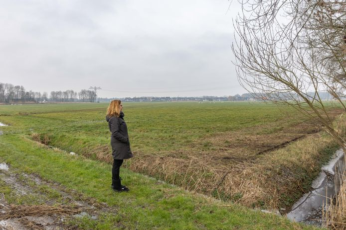 Annie Muizelaar kijkt uit over de groene weilanden achter haar woning, waar plannen zijn voor een zonnepark van 11 hectare.