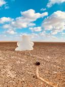Clouds - iPhone 11 - Catégorie: environnement - 1ère place